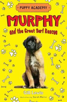 Gill Lewis: Murphy and the Great Surf Rescue, Buch