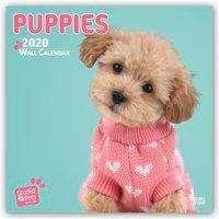 Myrna Huijing: Puppy Love - Hundewelpen 2020 - 18-Monatskalender, Diverse
