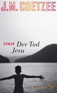 J. M. Coetzee: Der Tod Jesu, Buch