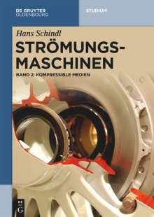 Hans Schindl: Kompressible Medien, Buch