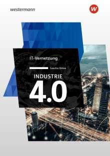 Sascha Dinse: Industrie 4.0 IT Vernetzung, Buch
