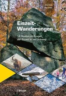 Jürg Alean: Eiszeit-Wanderungen, Buch