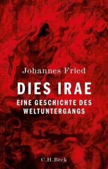 Johannes Fried: Dies irae, Buch