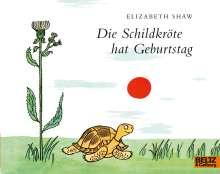 Shaw Elizabeth: Die Schildkröte hat Geburtstag, Buch