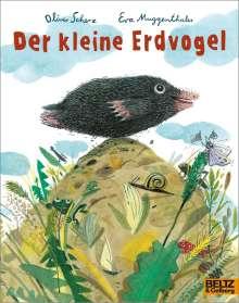 Oliver Scherz: Der kleine Erdvogel, Buch