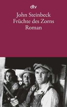 John Steinbeck: Früchte des Zorns, Buch