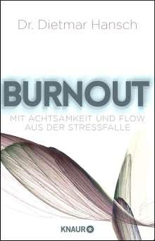 Dietmar Hansch: Burnout, Buch