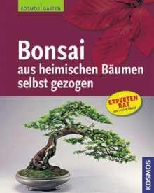 Bonsai aus heimischen Bäumen s, Buch
