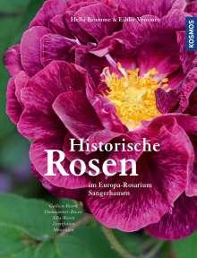 Hella Brumme: Historische Rosen, Buch