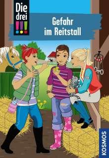 Henriette Wich: Die drei !!! 13. Gefahr im Reitstall (drei Ausrufezeichen), Buch