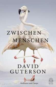 David Guterson: Zwischen Menschen, Buch