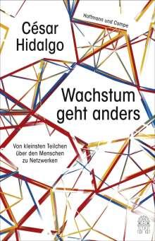 Cesar Hidalgo: Wachstum geht anders, Buch