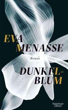 Eva Menasse: Dunkelblum, Buch