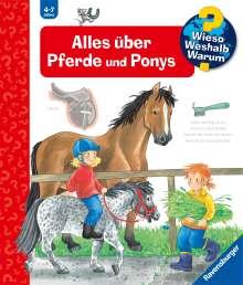 Andrea Erne: Alles über Pferde und Ponys, Buch