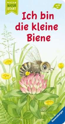 Sandra Grimm: Ich bin die kleine Biene, Buch