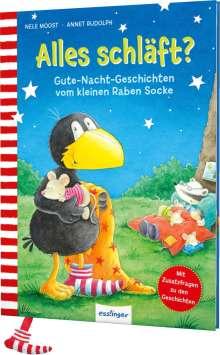 Nele Moost: Der kleine Rabe Socke: Alles schläft?, Buch