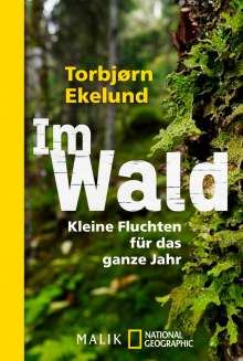 Torbjørn Ekelund: Im Wald, Buch