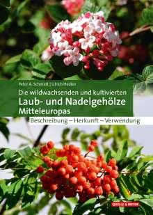 Peter A. Schmidt: Die wildwachsenden und kultivierten Laub- und Nadelgehölze Mitteleuropas, Buch
