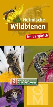 Heimische Wildbienen, Buch