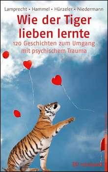 Katharina Lamprecht: Wie der Tiger lieben lernte, Buch