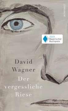 David Wagner: Der vergessliche Riese, Buch