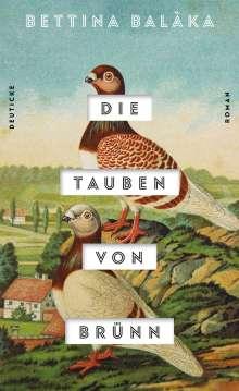 Bettina Balàka: Die Tauben von Brünn, Buch