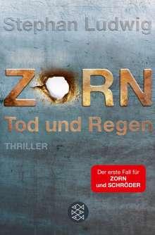 Stephan Ludwig: Zorn - Tod und Regen, Buch