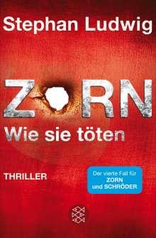Stephan Ludwig: Zorn - Wie sie töten, Buch