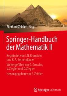 Springer-Handbuch der Mathematik II, Buch