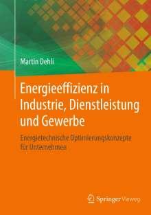 Martin Dehli: Energieeffizienz in Industrie, Dienstleistung und Gewerbe, Buch