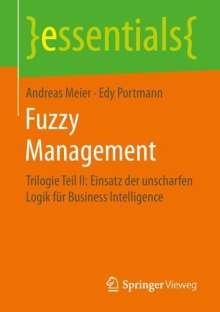 Andreas Meier: Fuzzy Management, Buch