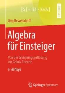 Jörg Bewersdorff: Algebra für Einsteiger, Buch