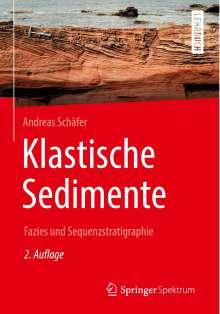 Andreas Schäfer: Klastische Sedimente, Buch