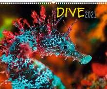 Dive 2021, Kalender