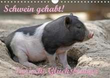 Antje Lindert-Rottke: Schwein gehabt! (Wandkalender 2019 DIN A4 quer), Diverse
