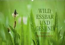 Markus Wuchenauer Pixelrohkost. De: WILD, ESSBAR UND GESUND Essbare Wildpflanzen (Wandkalender 2021 DIN A2 quer), Kalender