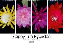 Steffen Gierok: Epiphyllum-Hybriden (Wandkalender 2021 DIN A2 quer), Kalender