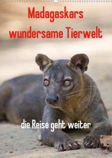 Antje Hopfmann: Madagaskars wundersame Tierwelt - die Reise geht weiter (Wandkalender 2021 DIN A2 hoch), Kalender