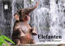 Elisabeth Stanzer: Elefanten. Spaß am Wasser (Wandkalender 2021 DIN A3 quer), Kalender