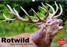 Elisabeth Stanzer: Rotwild. Edle Hirsche, stolze Kühe (Wandkalender 2021 DIN A3 quer), Kalender