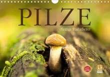 Markus Wuchenauer Pixelrohkost. De: Pilze - fleißige Waldarbeiter (Wandkalender 2021 DIN A4 quer), Kalender