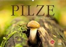 Markus Wuchenauer Pixelrohkost. De: Pilze - fleißige Waldarbeiter (Wandkalender 2021 DIN A2 quer), Kalender