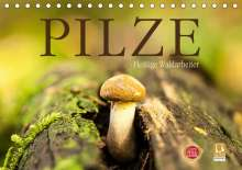 Markus Wuchenauer Pixelrohkost. De: Pilze - fleißige Waldarbeiter (Tischkalender 2021 DIN A5 quer), Kalender