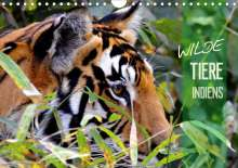 Manfred Bergermann: Wilde Tiere Indiens (Wandkalender 2021 DIN A4 quer), Kalender