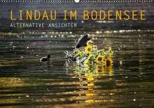 Markus Wuchenauer Pixelrohkost. De: Lindau im Bodensee - Alternative Ansichten (Wandkalender 2021 DIN A2 quer), Kalender