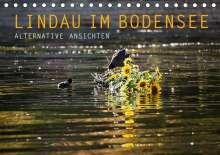 Markus Wuchenauer Pixelrohkost. De: Lindau im Bodensee - Alternative Ansichten (Tischkalender 2021 DIN A5 quer), Kalender