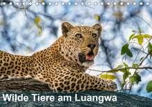 Bruno Pohl: Wilde Tiere am Luangwa (Tischkalender 2021 DIN A5 quer), Kalender