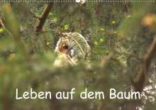Kevin Andreas Lederle: Leben auf dem Baum (Wandkalender 2021 DIN A2 quer), Kalender