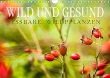 Markus Wuchenauer Pixelrohkost. De: WILD UND GESUND Essbare Wildpflanzen (Wandkalender 2021 DIN A4 quer), Kalender