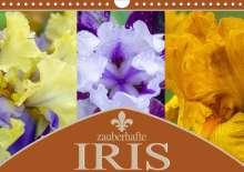 Steffen Gierok: Zauberhafte Iris (Wandkalender 2021 DIN A4 quer), Kalender